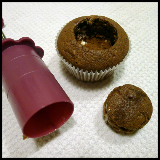CupcakePlungerPlug